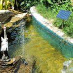 solar-pond-pumps