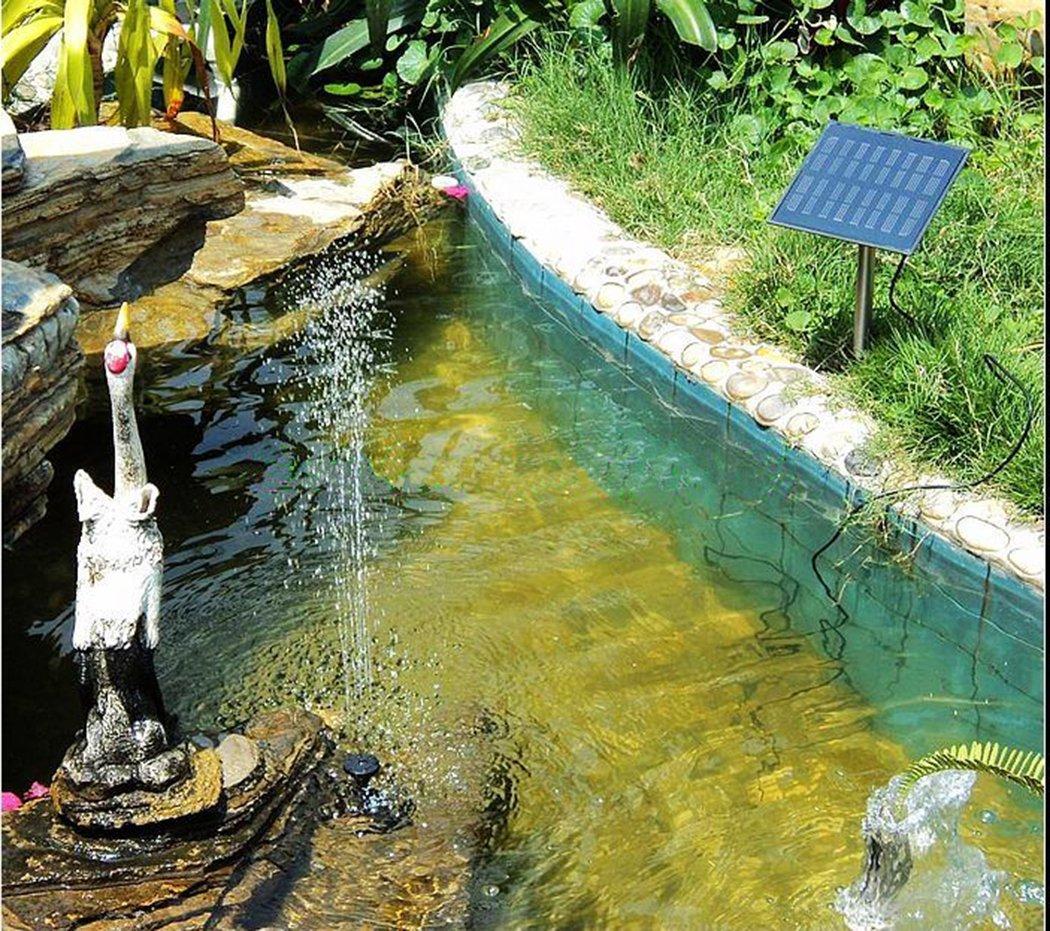 Solar Pond pumps