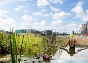 UK Natural swimming pool