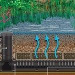 Pond Bog Filter   Aquascape